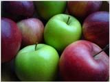 Plody jesene: jablká