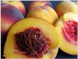 Broskyne, voňavé ovocie z konca leta