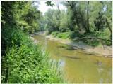 NP Donau-Auen v Rakúsku a o tom, ako sme sa nemali kde naobedovať