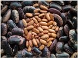 Sýte fazuľové polievky